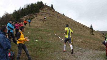 formico trail 2014