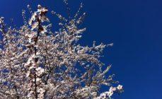 Meteo – La primavera inizia con il sole