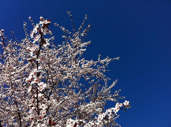 Weekend soleggiato e mite, ultimi fenomeni venerdì all'estremo Sud - Meteo Roma