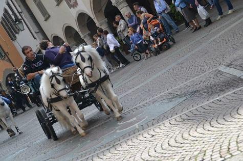 sfilata cavalli Clusone
