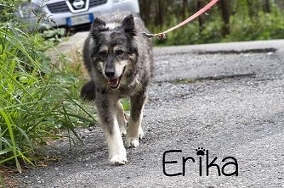 Erika-new