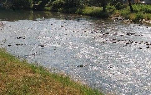 fiume-serio