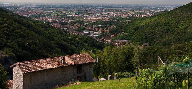 Alzano Lombardo visto dall'alto