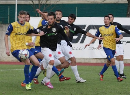 Virtus Bergamo alla caccia dei 3 punti, domani in campo contro la Pergolettese