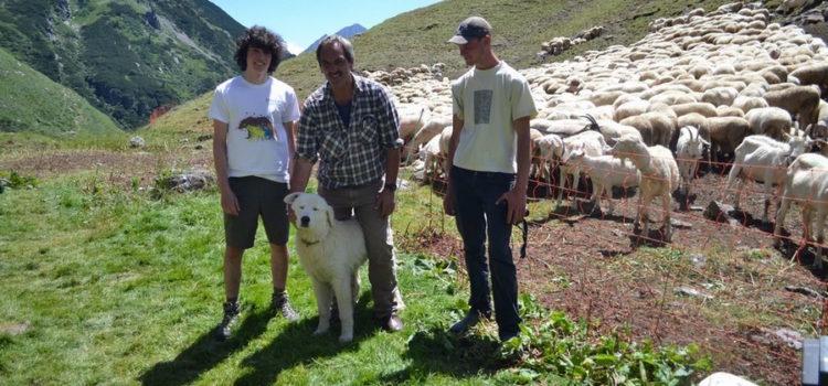 Pastori e volontari, collaudate le vacanze in alpeggio sulle Orobie bergamasche