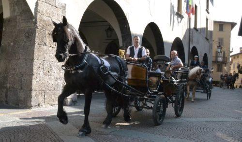 Clusone: 100 cavalli sfilano sotto l'orologio, domani si elegge la Miss Regina – Foto e video