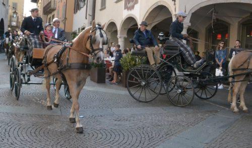 Dal 23 al 25 settembre a Clusone la 66esima edizione della Fiera Zootecnica