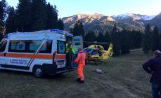 Cade da un albero agli Spiazzi di Gromo, 48enne in ospedale