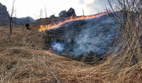 Incendio sul Pizzo Frol a Ponte Nossa, tempestivo l'intervento dei vigili del fuoco