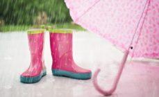 Meteo – In arrivo forti piogge e temporali
