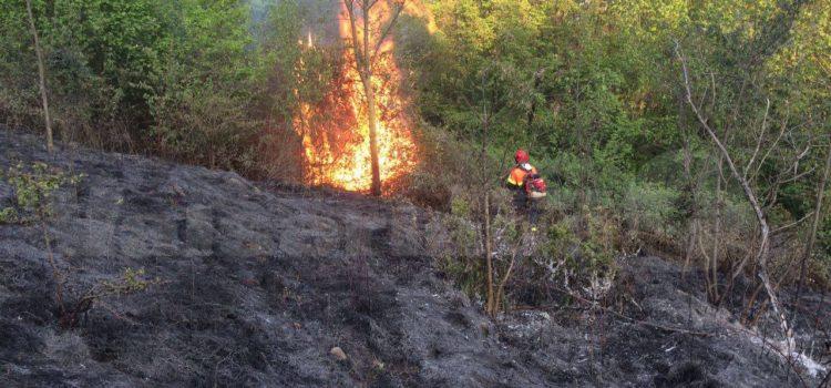 Allarme incendio sopra Cazzano, al lavoro i volontari