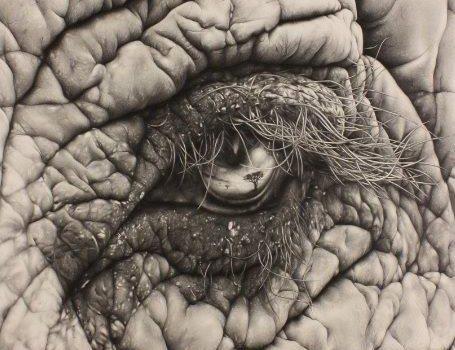 """""""Lo specchio dell'anima"""", l'opera di Angela Ongaro di Gandino premiata in Russia"""