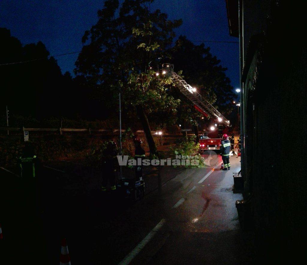 Incendio di sterpaglie a Cadibona: domato dai vigili del fuoco