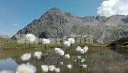 Ammirando la Val Cerviera dal monte Cimone