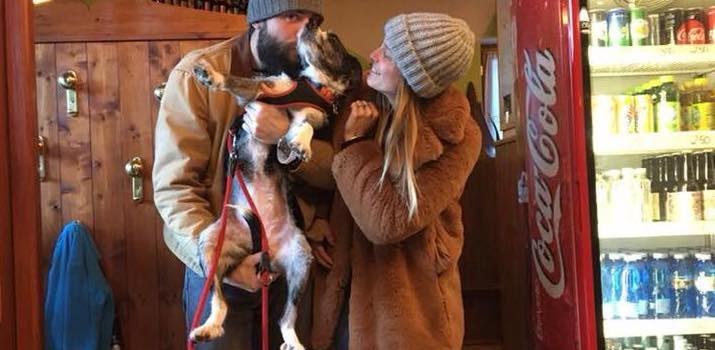 Gromo, dopo giorni di ricerche ritrovata la cagnolina Wanda