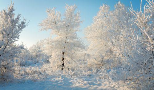 Venti gelidi siberiani dalla Russia, da domenica torna il freddo
