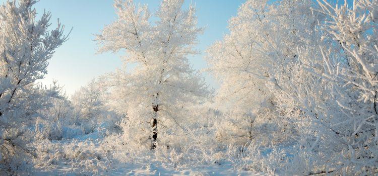 Meteo – Inizio settimana soleggiato e freddo