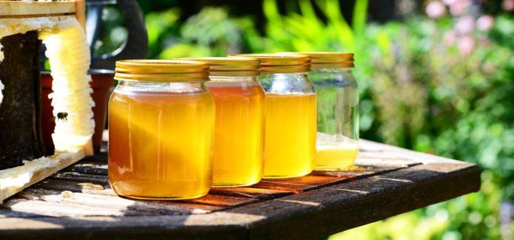 Alla scoperta del miele della Val Borlezza