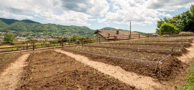 """Dal Messico a Gandino: """"Nutrire rispetto"""", tra agricoltura urbana e qualità dell'alimentazione"""