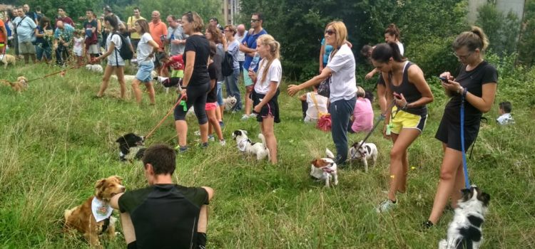 Clusone un paese a misura di cane, grande successo per la Bau Bau Run – Foto