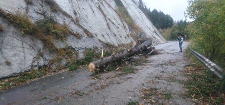 Riapre la strada per il monte Pora, a breve lavori di messa in sicurezza