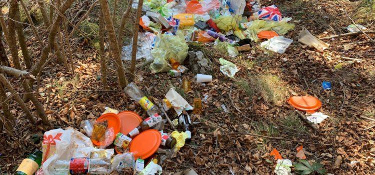 Proposta in Provincia: foto-trappole per beccare chi abbandona i rifiuti