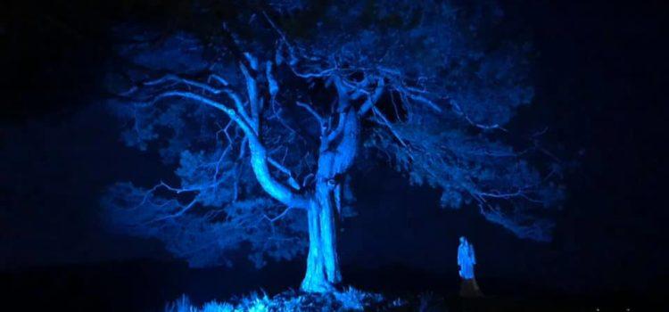 Autismo, alta Val Seriana tinta di blu – foto