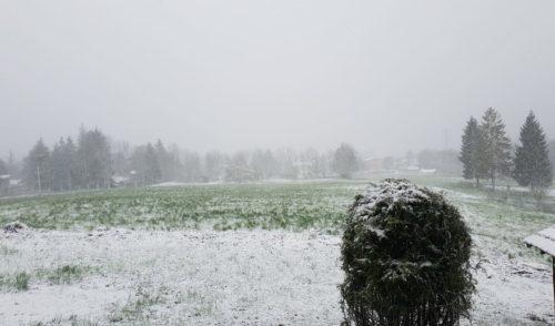 Allerta meteo: possibili nevicate in serata fino in pianura