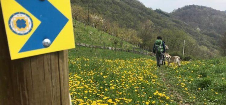 Alta Via delle Grazie, a Gandino l'itinerario mariano fra valli e santuari