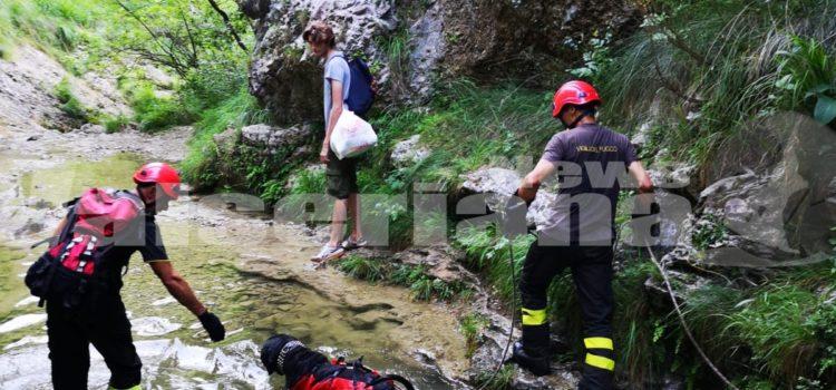 Nese: cane affaticato recuperato dai Vigili del fuoco