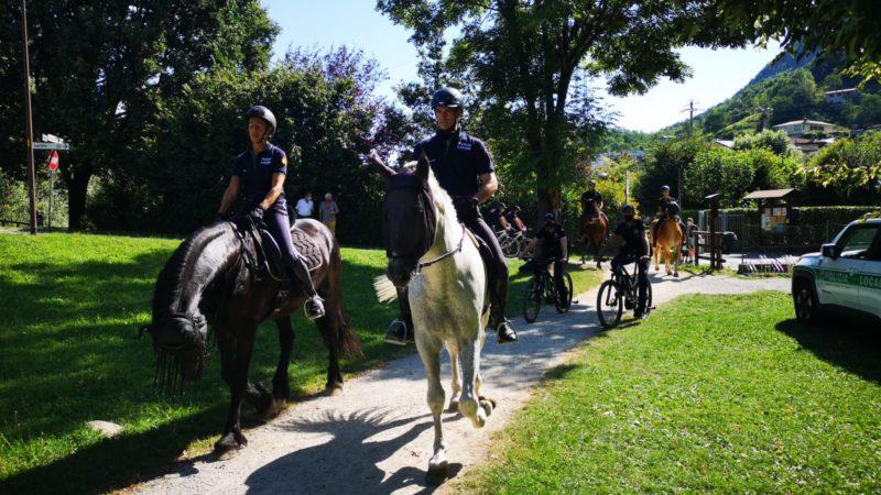 polizia-cavallo